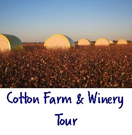 Cotton farm and winery