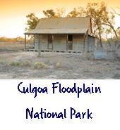 Culgoa floodplain national park