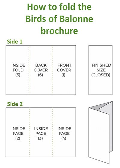 How to fold birds of balonne brochure - resized